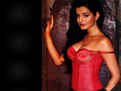 Ameesha Patel Picture - Image 8