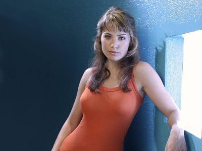 Erica Durance Picture - Image 9