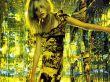 Gemma Ward 11