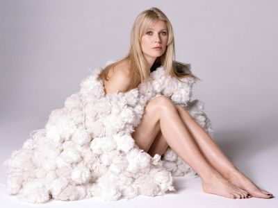 Gwyneth Paltrow Picture - Image 26