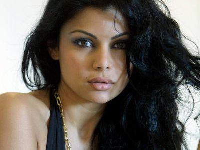 Haifa Wehbe Picture - Image 10