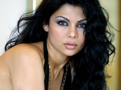 Haifa Wehbe Picture - Image 5