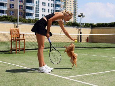 Maria Sharapova Picture - Image 4